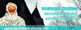 banfalva_borsodi_zsuzsa_banner_855x341.indd